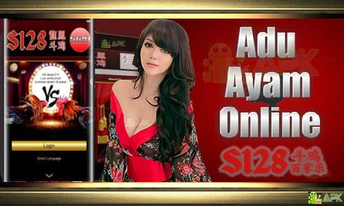 Agen Judi S128 Adu Ayam » Download S128APK Android Dan Iphone
