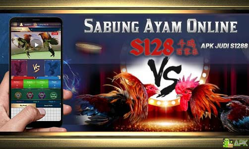 Daftar Agen Judi S128 Sabung Ayam Online » Ayam Laga Super